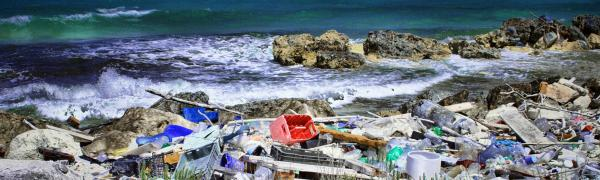 Plastic pollution ocean study