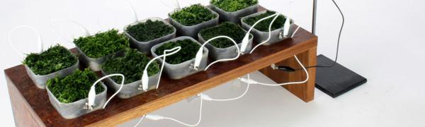 Plant Charger